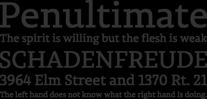 Permian Slab Font Phrases