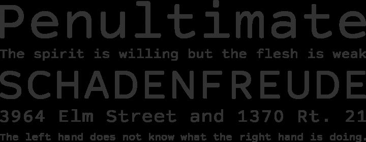 Courier Prime Sans Font Phrases
