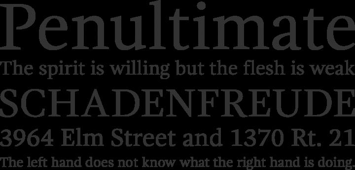 Gandhi Serif Font Phrases