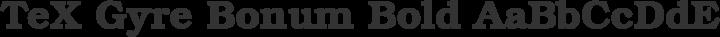 TeX Gyre Bonum Bold free font