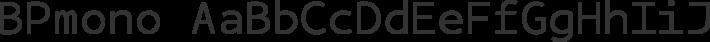 BPmono font family by Backpacker