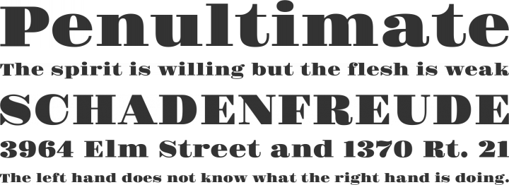 Gravitas One Font Phrases