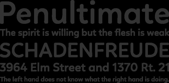 Linotte Font Phrases