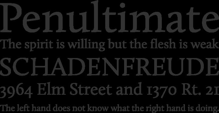 Calluna Font Phrases