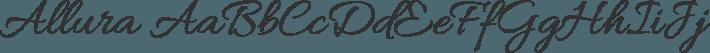 Allura font family by TypeSETit