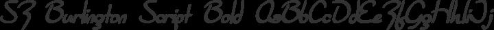 SF Burlington Script Bold free font