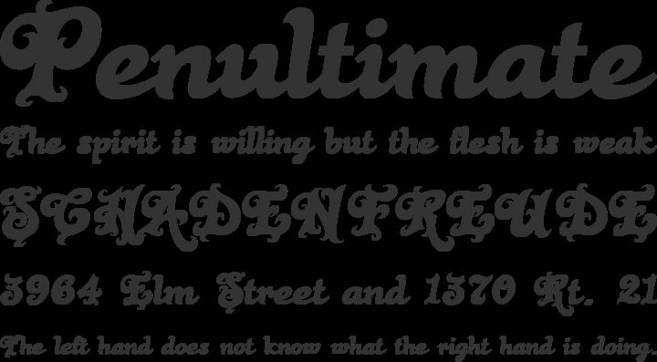 Black Rose Font Phrases